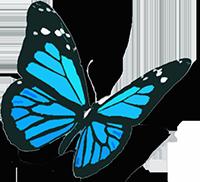 Urban Hypnosis - Butterfly Logo